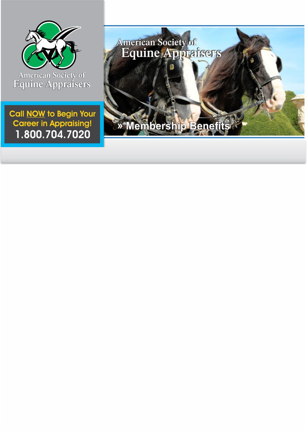 picture How to Become an Equine Appraiser